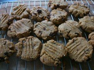 Delicious warm cookies