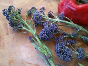 before cooking... the psb looks like lavender!