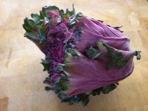 Baby button hole kale, whole...
